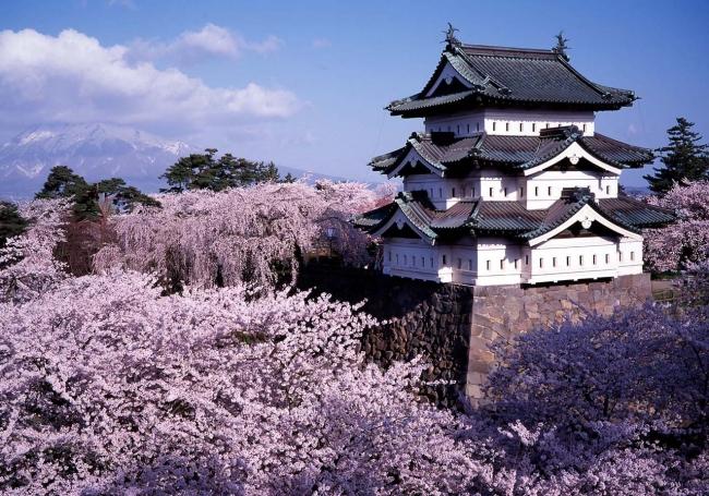 VIAJE GRUPAL A JAPON IMPERIAL DESDE ARGENTINA - Buteler Turismo
