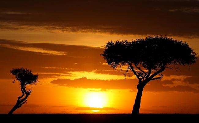 VIAJES A KENIA, NAIROBI y  JOHANNESBURGO desde Argentina - Nairobi / Naivasha / Johannesburgo /  - Buteler Turismo