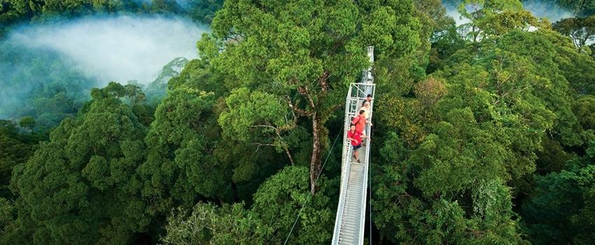 VIAJES GRUPALES A COSTA RICA DESDE ARGENTINA - Monteverde / Parque nacional Manuel Antonio / Parque Nacional Tortuguero / San José - Costa Rica / Volcán Arenal /  - Buteler Turismo
