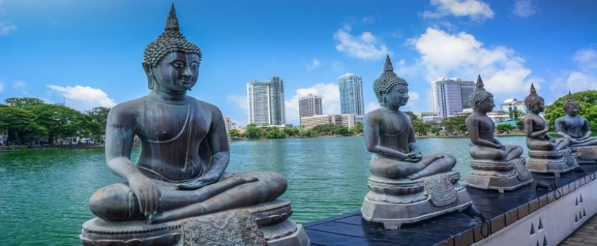 PAQUETES DE VIAJES GRUPALES A LA INDIA, MALDIVAS, SRI LANKA Y DUBAI - Buteler Turismo